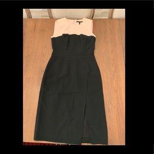 BCBG Max Azria Blush and Black Dress